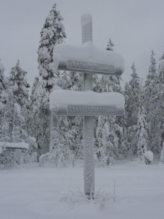 Tässä on terveisiä Rovaniemeltä. Postaus, joka jäi kirjoittamatta. Kävin vähän hiihtelemässä ja harrastamassa sosiaalista elämää. Tulin takaisin poro takakontissa, ihan niinkuin viime kesän käynnillä päätin tekeväni. Jospa jo ennen seuraavaa teurastuskautta pääsisin tätä syömään.