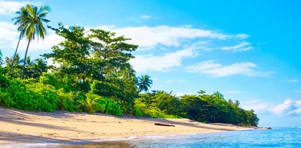 Palmuranta Thaimaassa