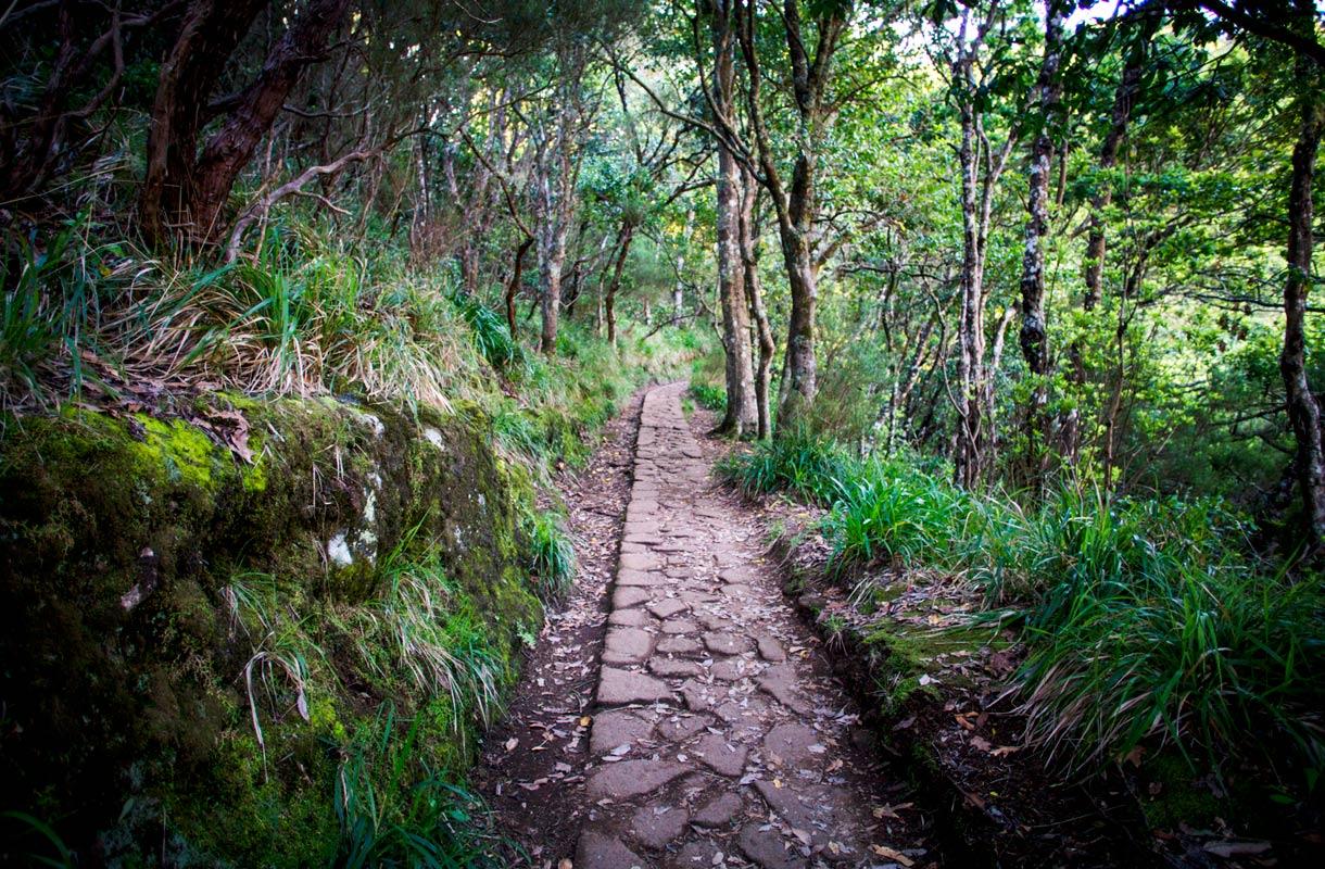 Madeira äkkilähdöt