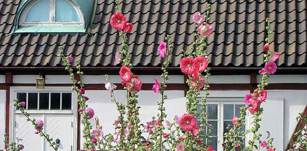 Helsingborgissa sijaitseva Sofieron linna on puutarhaturistin unelmakohde