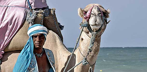 Kameli Djerbassa