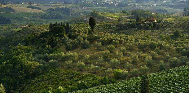 Italian kaunis maaseutu