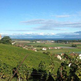 Luins, Sveitsi