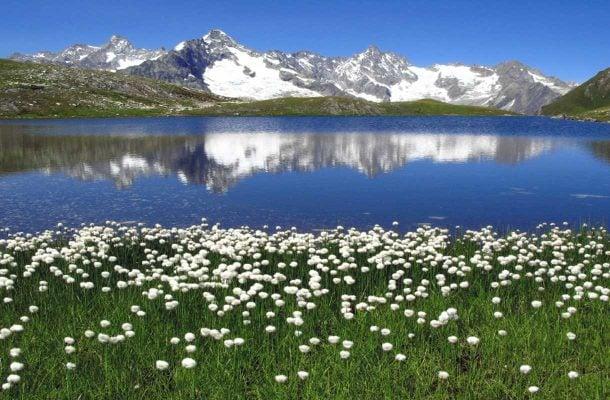 Mont Dolent, Sveitsi