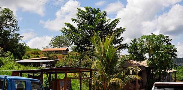 Suomesta ei mene suoria lentoja Surinameen