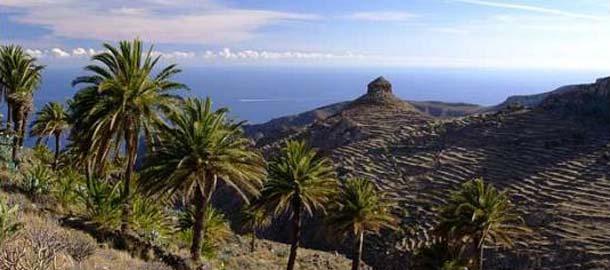 Tee retki Teneriffalta Gomeralle