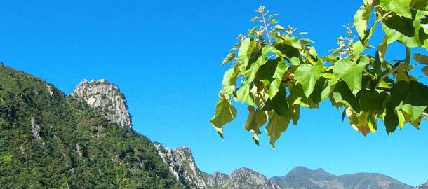 Vuoristo Pohjois-Koreassa
