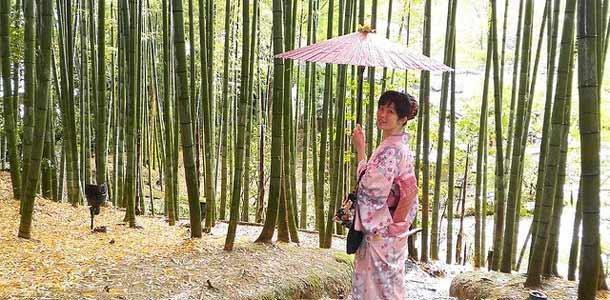 Bambumetsä Kiotossa
