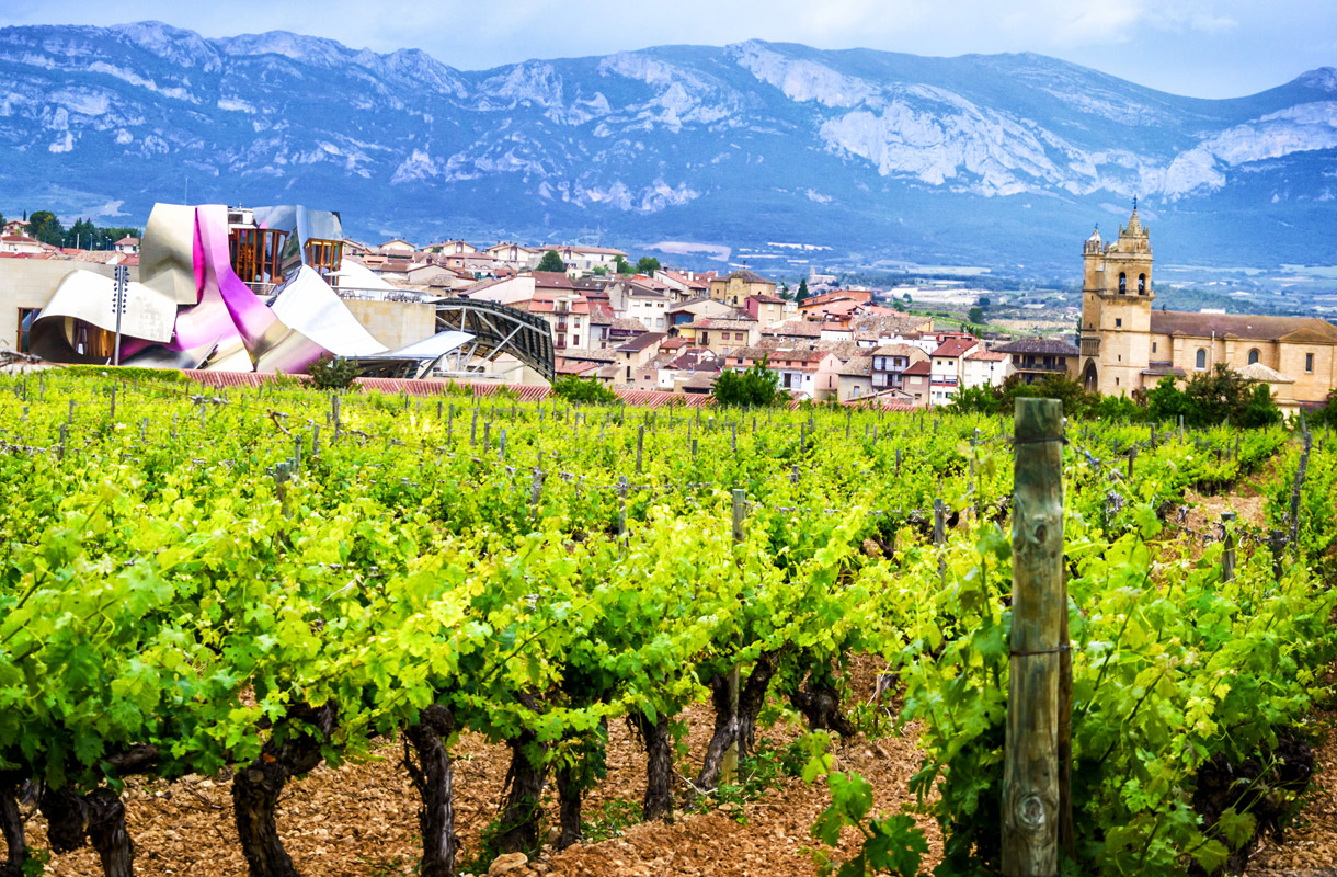 La Riojan viinit