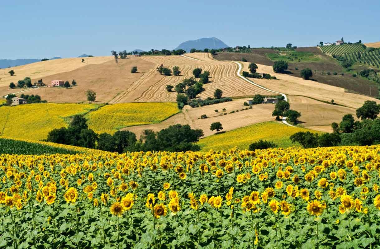 Italian maaseutu