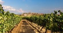 Viinimatka La Riojaan
