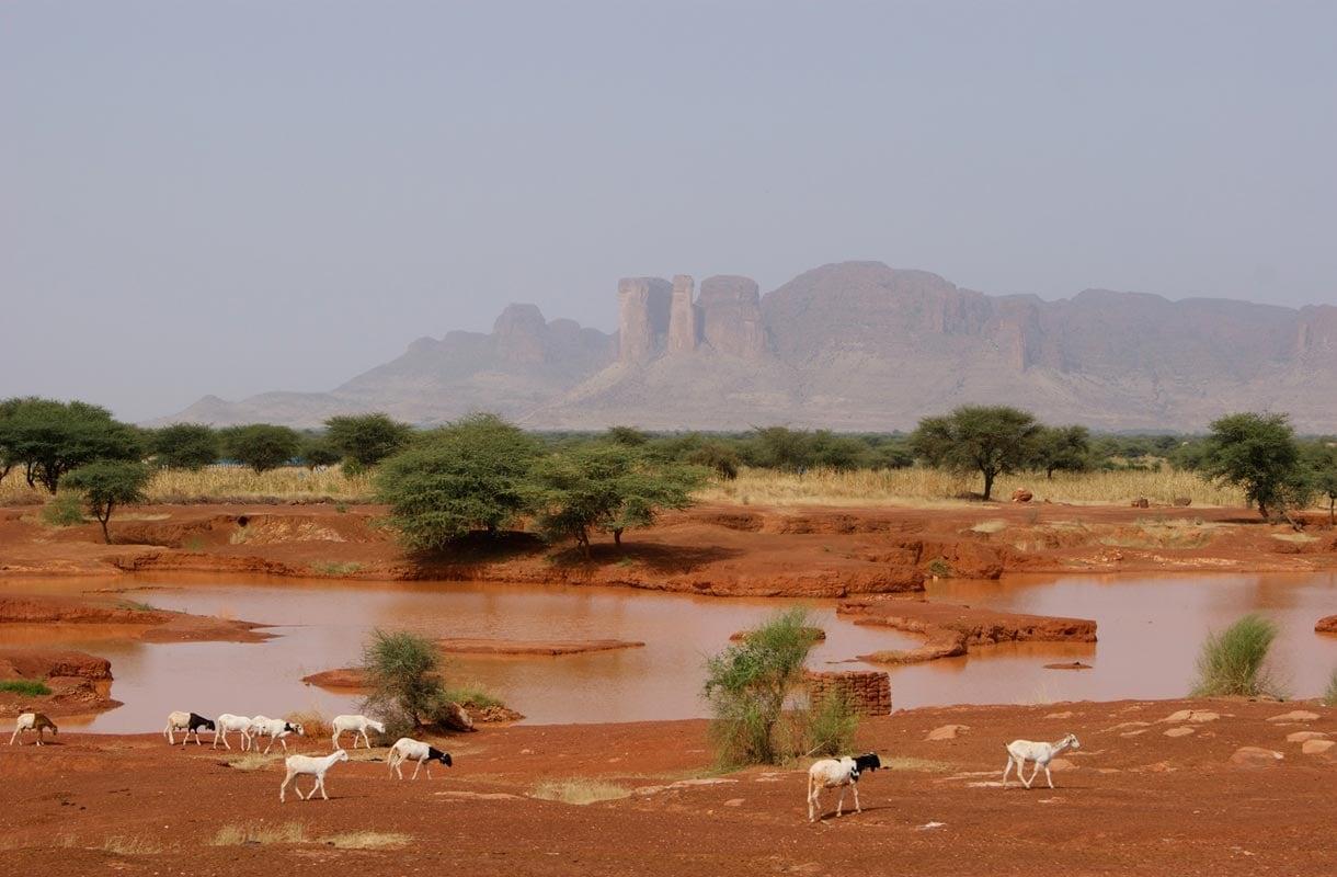 Timbuktu on noin 32 000 asukkaan kaupunki.