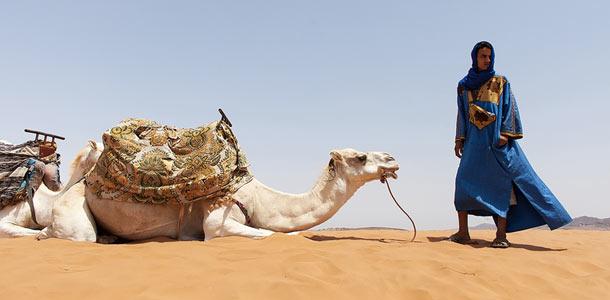 Kameli aavikolla