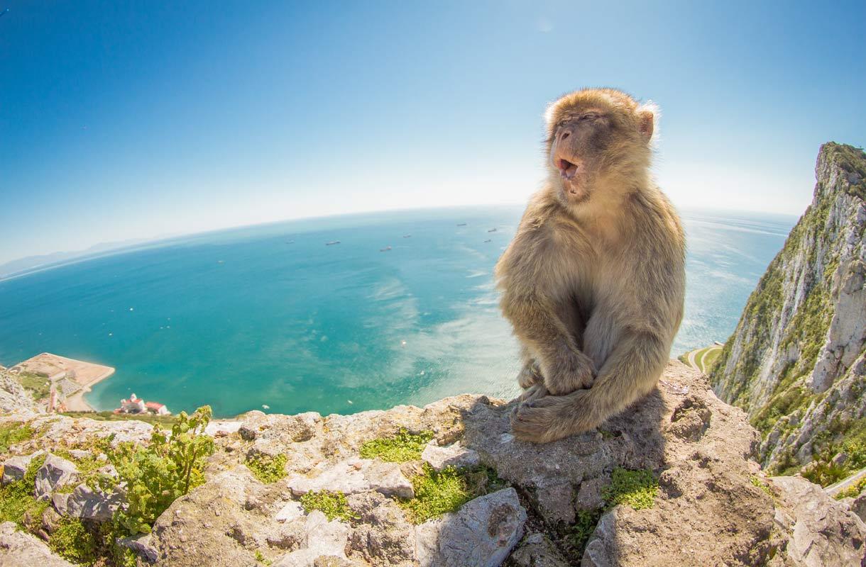 Gibraltar, Iso-Britannia