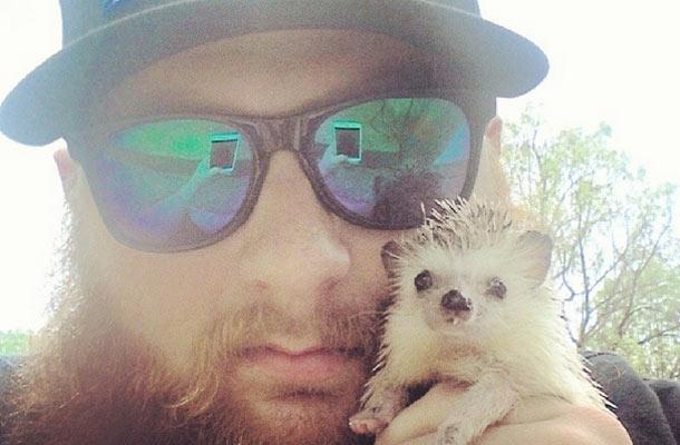 Yksihampainen Norman-siili hurmaa Instagramissa