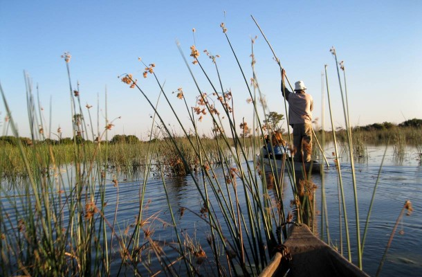 Botswana-okavango-delta-Flickr-Athena-Leo
