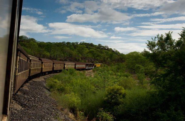 Zimbabwe-juna-Flickr-Richard-Stupart