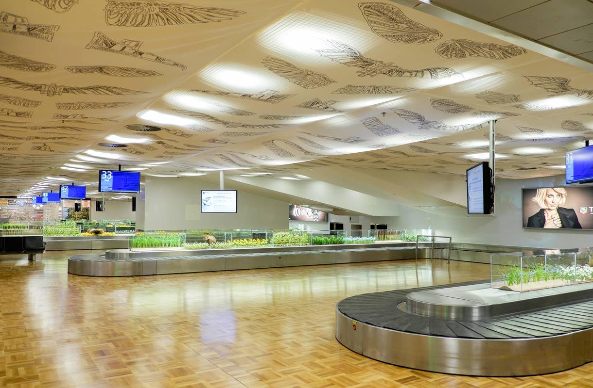 Luonto tervehtii tulijaa Helsinki-Vantaan matkatavara-aulassa