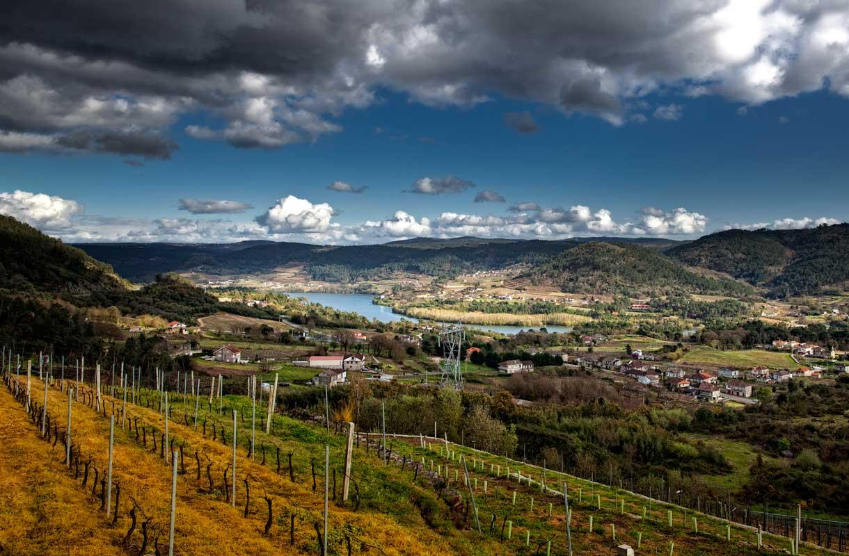 Rias Baixasin viinitie Espanjan Galiciassa