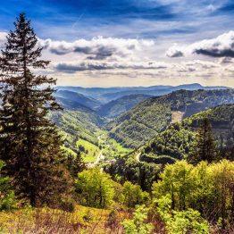 Saksan Schwarzwald