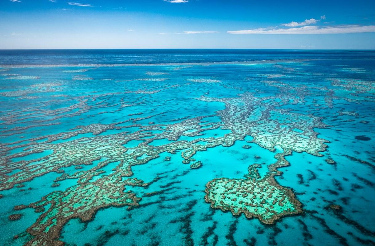 Iso valliriutta, Australia