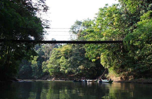 Luonnonpuisto Borneolla