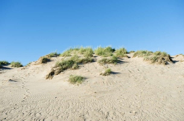 Yyterin rannan hiekkadyynit Porissa