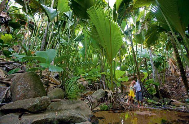 Vaelluksella Seychelleillä