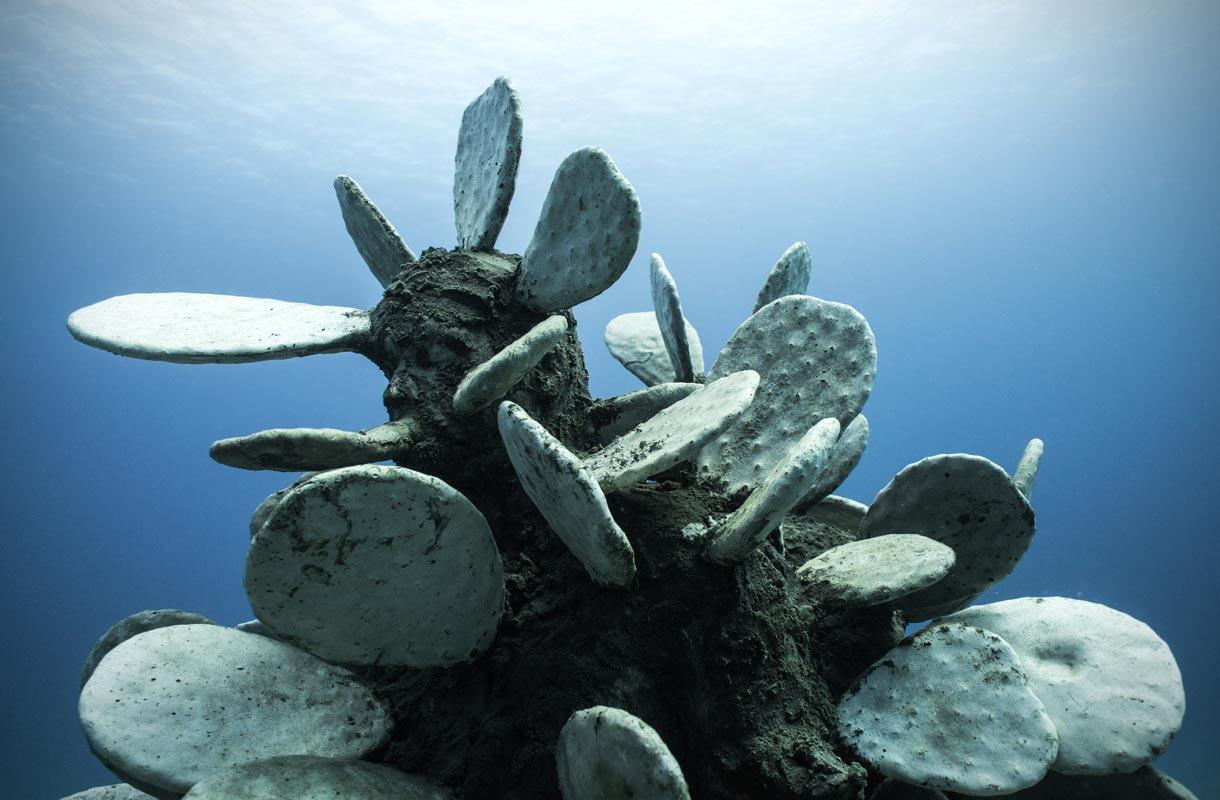 Museo Atlanticon veistokset on tehty houkuttelemaan meren eliöitä