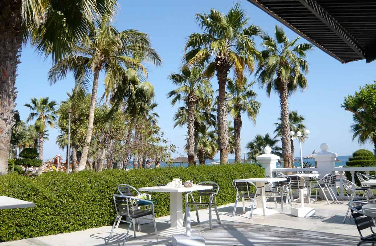 Fujairahista löytyy palmuja, rantaa ja aurinkoa.