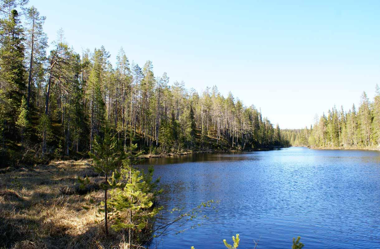 Hossa, Suomi