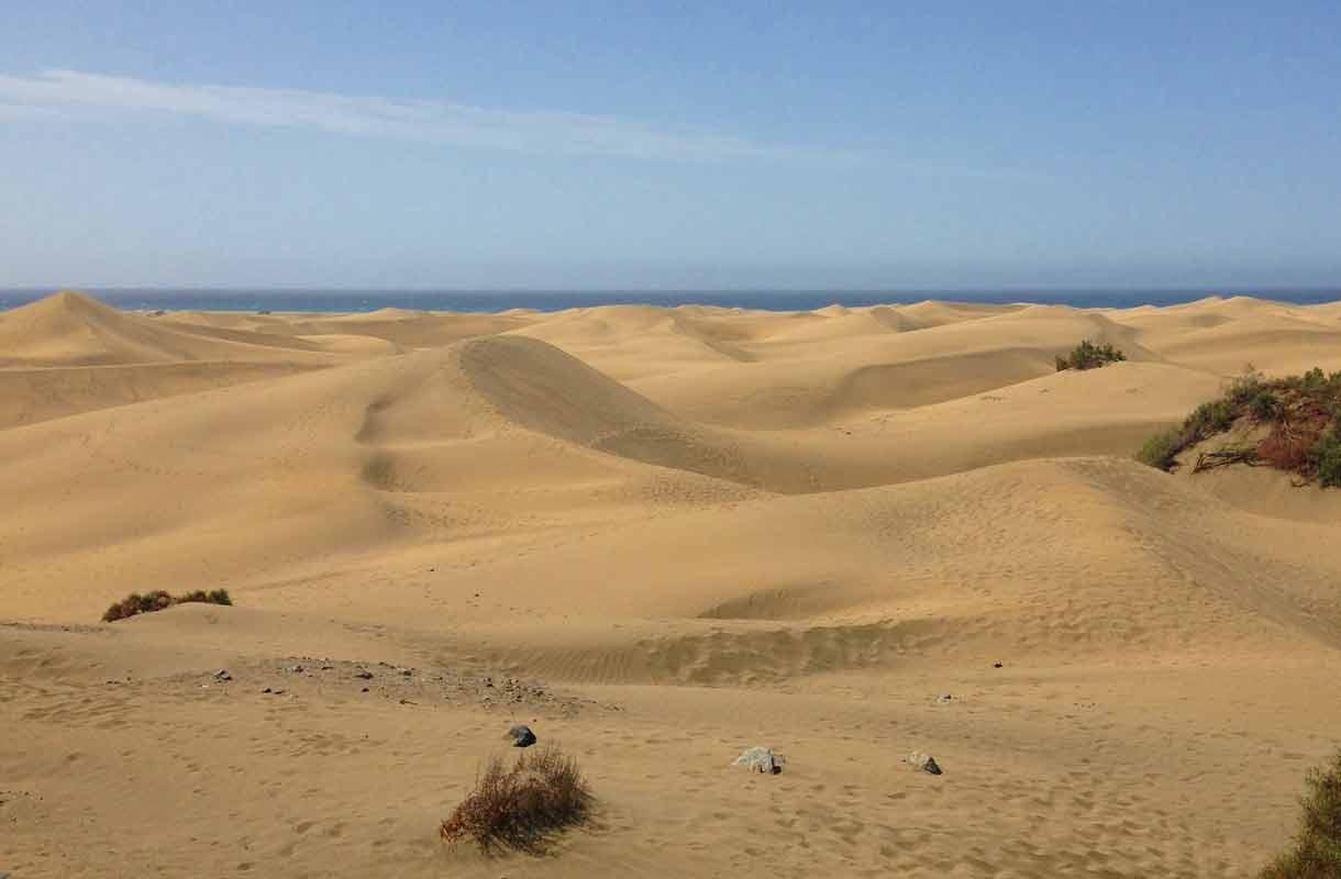 Maspalomasin hiekkadyynit ovat muodostuneet Saharan hiekasta.