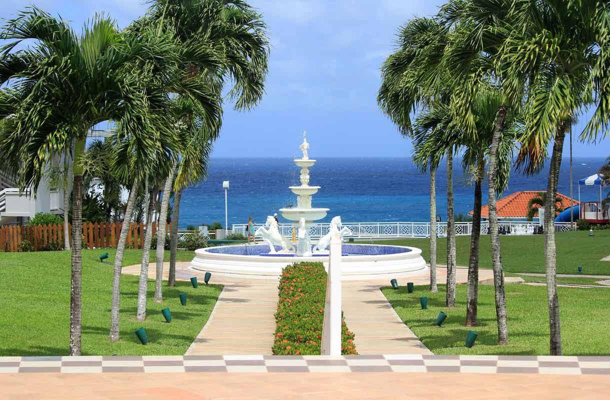Palmuja ja turkoosia vettä Jamaikan Montego Baylla.