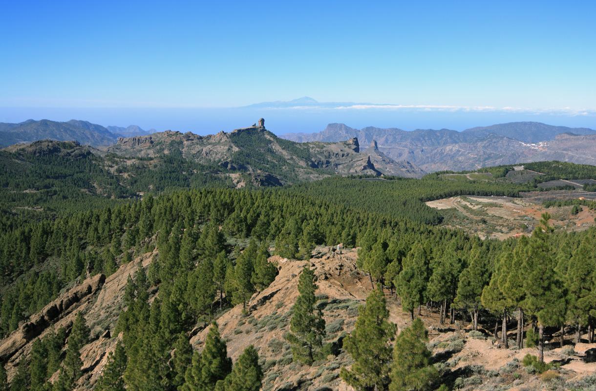 Pico del Pozo de las Nieves, Gren Canaria