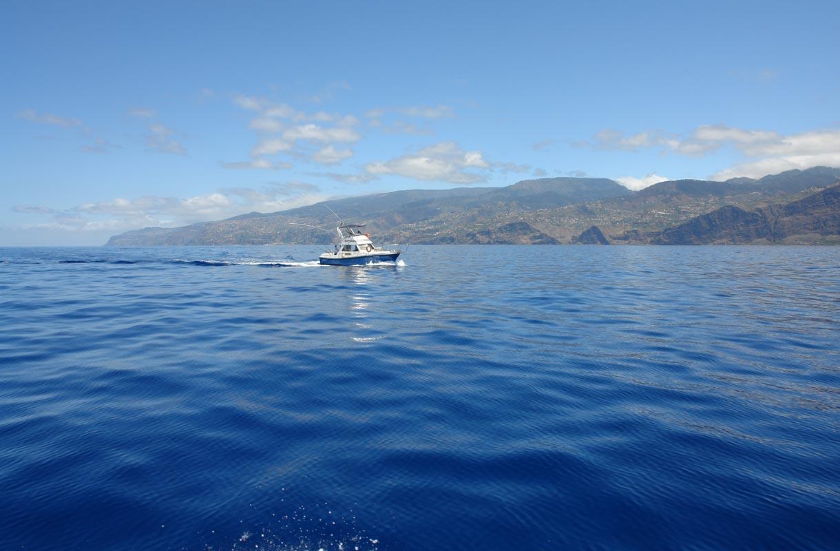 Madeira on urheilukalastajien suosiossa.