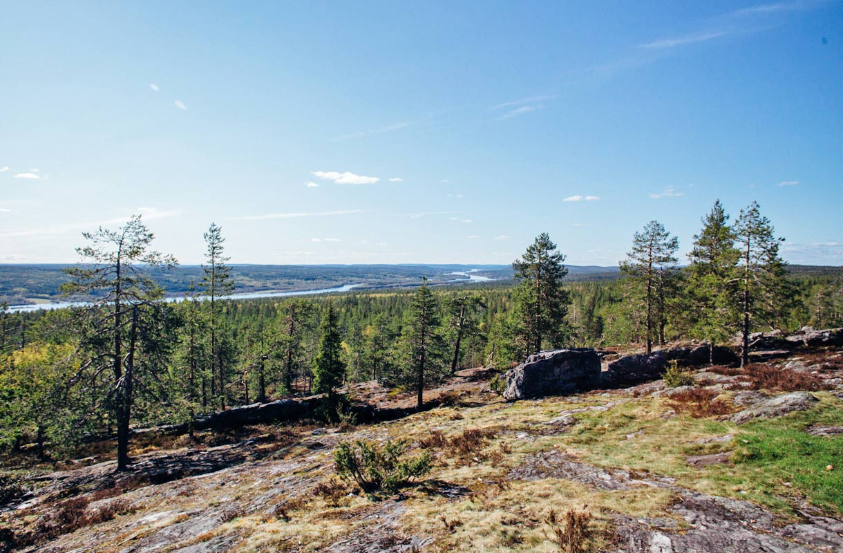 Kuninkaanlaavu, Rovaniemi