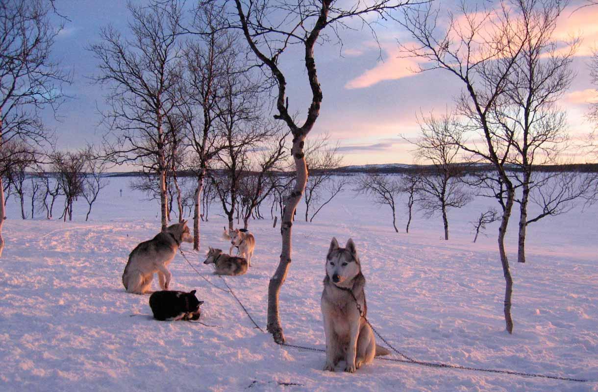 Utsjoki on Suomen pohjoisin kunta