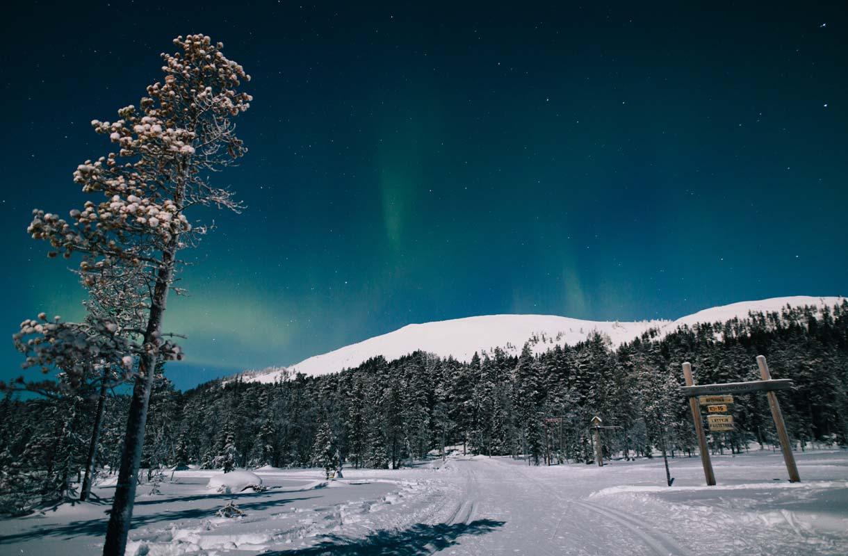 Ylläksen hiihtoladut