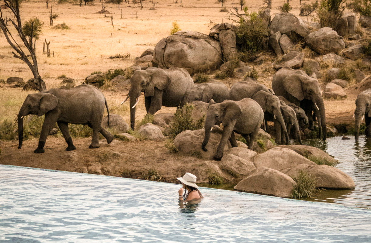 Four Seasons Safari Lodge, Tansania