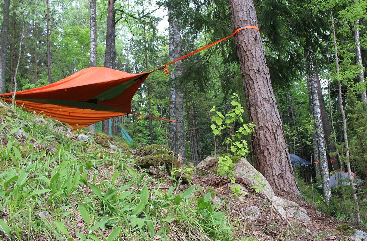 Yö puussa Espoossa