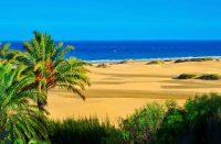 Gran Canarian Maspalomas ja Playa del Ingles ovat seksituristien suosiossa