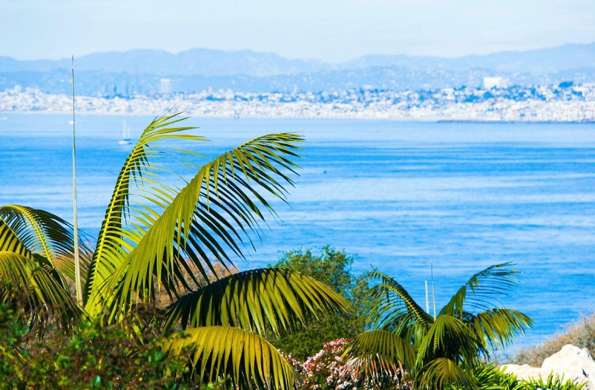 Kannabis on laillista Kaliforniassa, mutta turistin on syytä pitää varansa