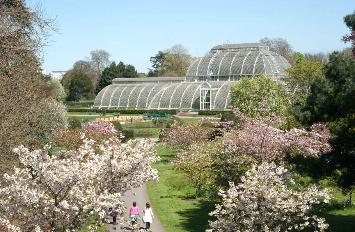 Kew Gardens on houkutteleva retkikohde Lontoosta