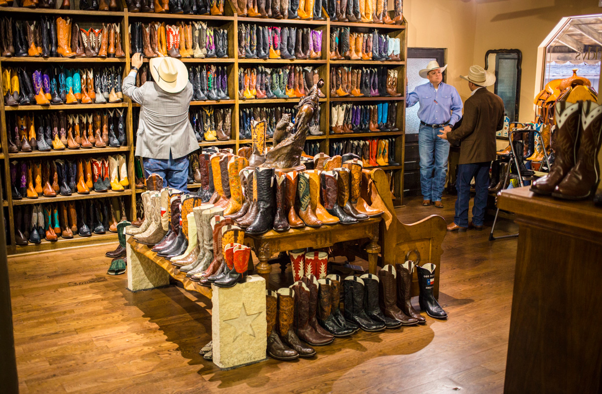 Cowboy-loma Teksasissa
