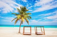Sargassum-merilevä kiusaa Karibian lomakohteita
