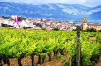 Marqués de Riscal -hotellia ympäröivät viinitarhat Espanjan Riojassa