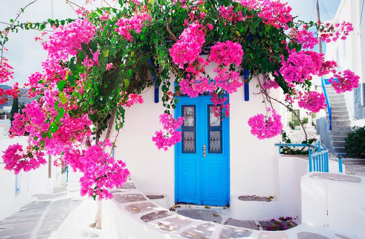 Miksi Kreikassa on niin paljon valkoisia taloja?