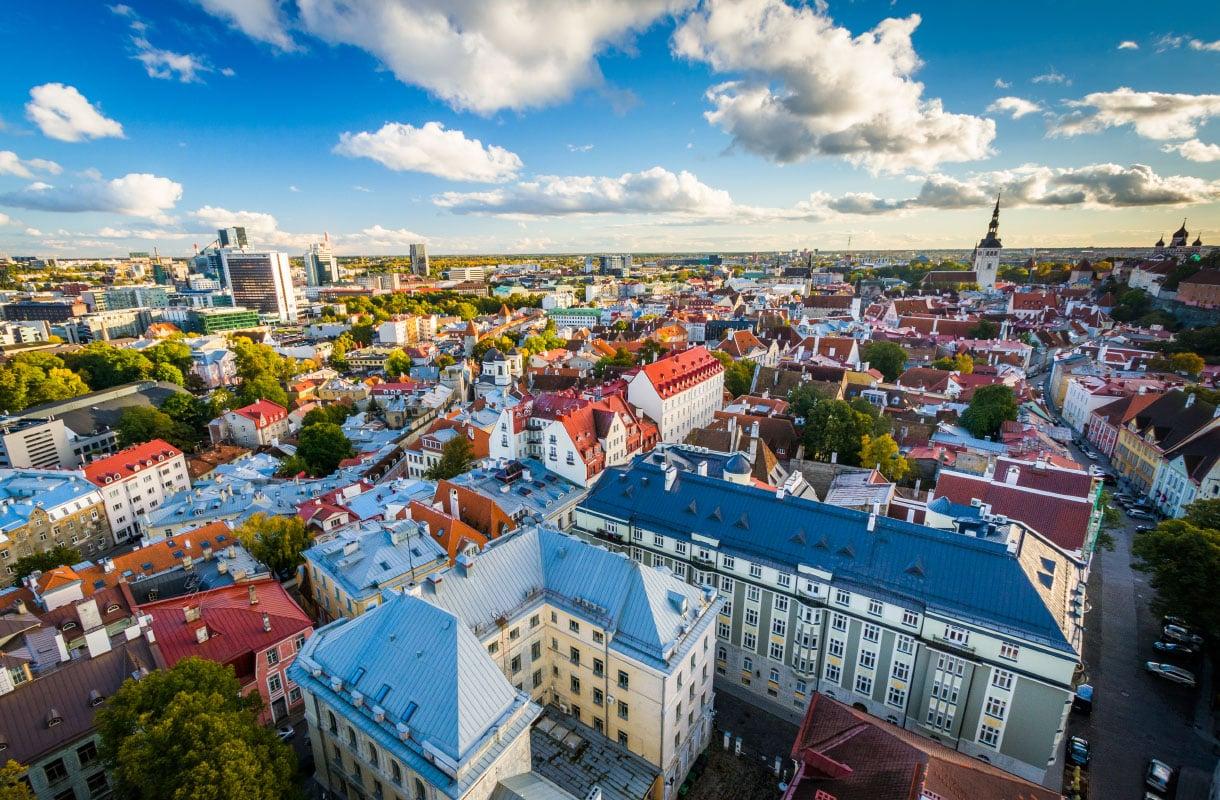 Tallinna halvalla