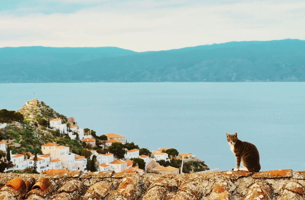 Ateenan saarikohteet